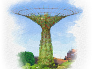 Supertrees Arrive in Chester