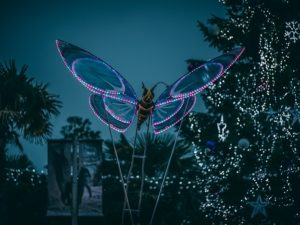 Chester Zoo has released exciting new details about its annual Christmas event, The Lanterns.