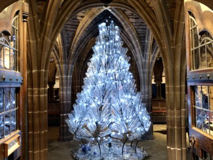 A Christmas Tree for Life, not just for Christmas at Chester Cathedral