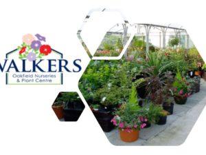 Walkers Oakfield Nurseries – Online Shop now open