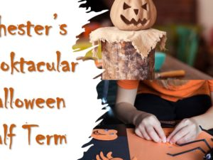 Spectacular Halloween half-term events at West Cheshire Museums